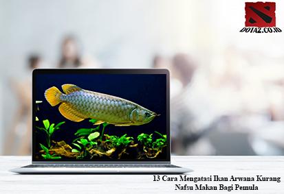 Cara-Mengatasi-Ikan-Arwana-Kurang-Nafsu-Makan