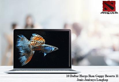Harga-Ikan-Guppy