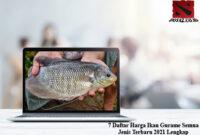 Harga-Ikan-Gurame